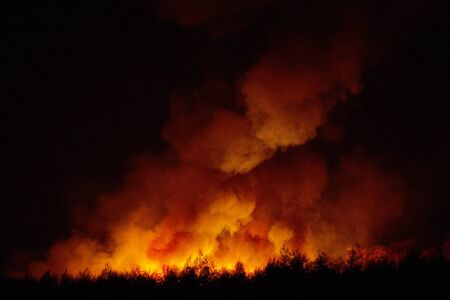 Big smoke from the burning sugarcane fields at night cause of pollution and environment impact.