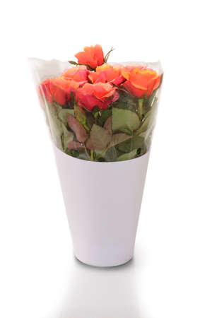 Beauty orange rose bouquet wrapped in clear plastic and white paper on white background. Stock Photo