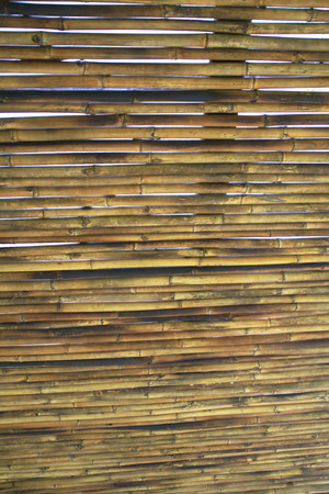 screen partition: bamboo Stock Photo