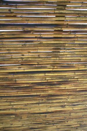 tableau: bamboo Stock Photo