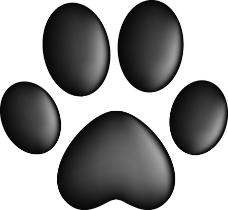 animal tracks: Paw Prints