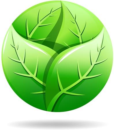 Green eco logo