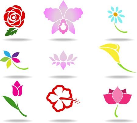 beautiful red hibiscus flower: Icono de la flor Vectores
