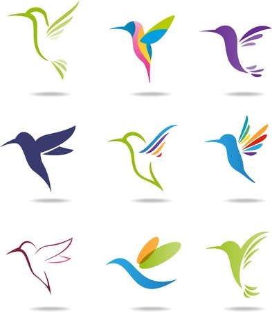 Hummingbird Stock Vector - 21018072