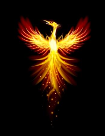 Oiseau Phoenix Banque d'images - 21018116