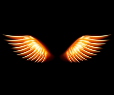 Wing in flame and fire  Illustration