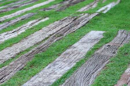 old wood floor on green grass for background