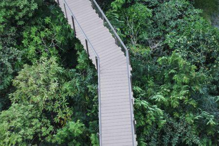Wooded bridge in park