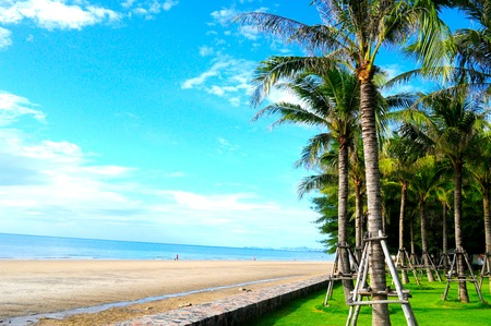 hua hin: This beach is a part of Hua Hin beach, Thailand  It has a beautiful landscape with white sand, blue sea, and lots of coconut trees  Stock Photo