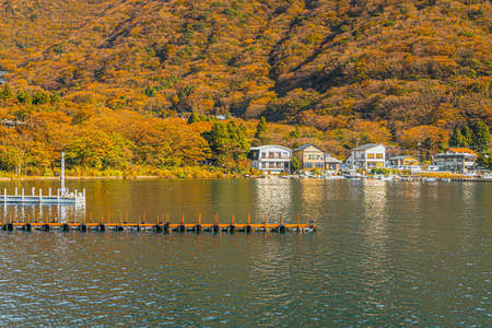 Landscape photo of port and many house with leaves turning orange, yellow, green in autumn, Japan. There is a lake in soft tones. There is shimmering light that creates warm tone. There is copy space.