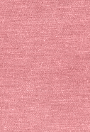pink fabric texture with tiny knots and scratches Stock Photo - 24452142