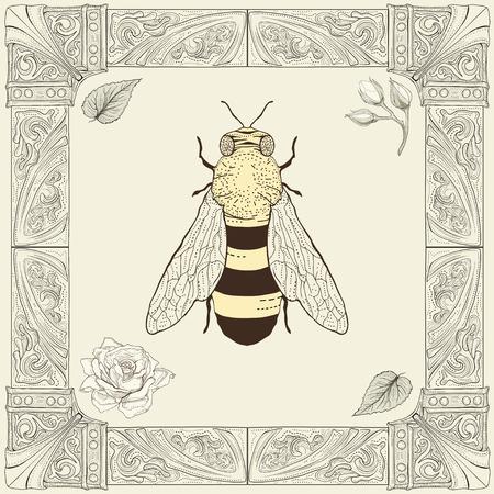 bee garden: abeja dibujo a mano brotes color de rosa y hojas con estilo marco decorativo grabado de la vendimia