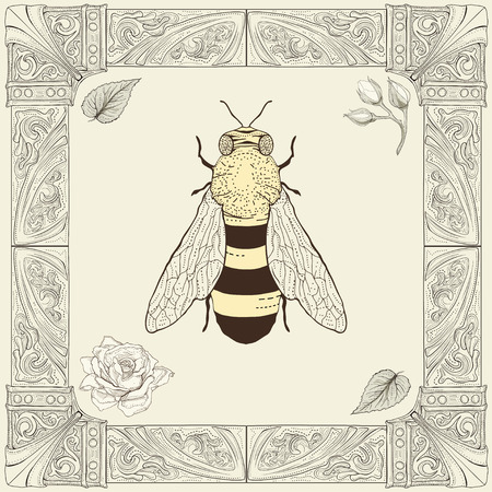 blossom honey: hand drawing bee rose buds and leaves with decorative frame vintage engraving style
