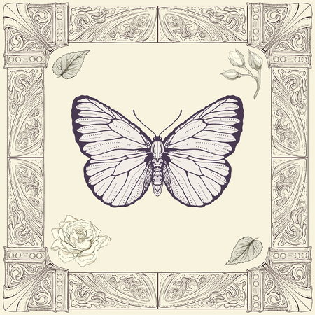 hand drawing butterfly rose buds and leaves with decorative frame vintage engraving style Vector
