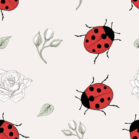 hand drawn ladybirds and roses seamless pattern vintage engraving style Vector