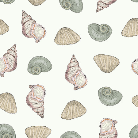 hand drawn seashells seamless pattern vintage illustration style Vector