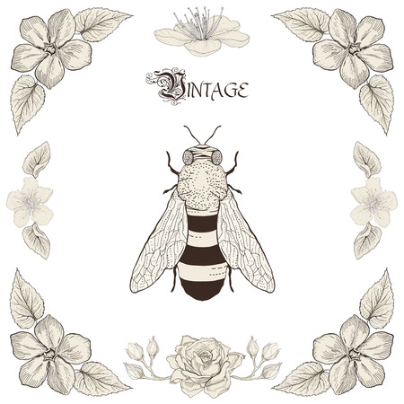 Hand drawing honey bee flowers and leaves decorative floral frame Vintage engraving style Vector