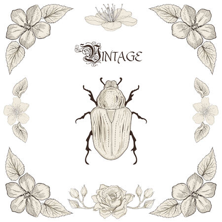 Hand drawing beetle flowers and leaves decorative floral frame Vintage engraving style