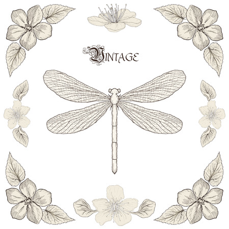 Hand drawing dragonfly flowers and leaves decorative floral frame Vintage engraving style Vector
