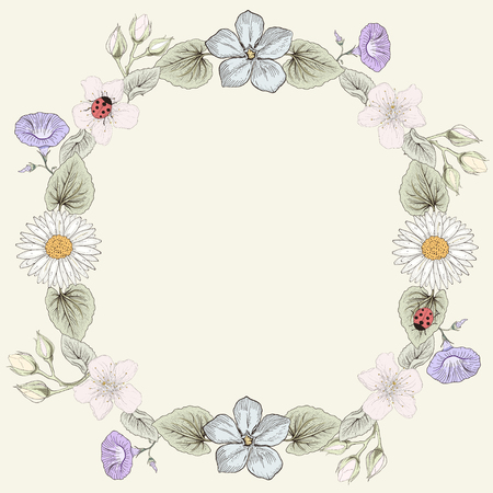 convolvulus: Hand drawn floral frame card. Colorful illustration. Vintage engraving style