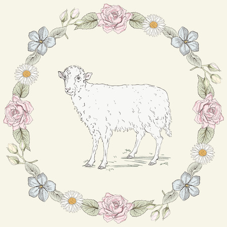 oxeye: Hand drawn sheep standing in the field and floral frame with roses and ox-eye daisies. Ornate colorful illustration. Vintage engraving style Illustration
