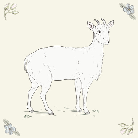 Hand drawn cheerful goat. Vintage engraving style Vector