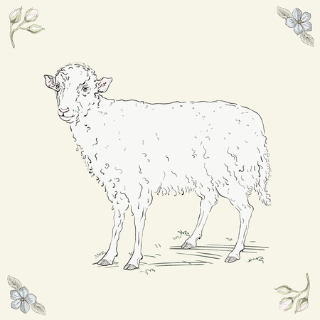 Hand drawn cheerful sheep. Vintage engraving style Vector