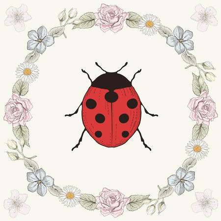 Hand drawn floral frame and ladybird. Ornate colorful illustration. Vintage engraving style Vector