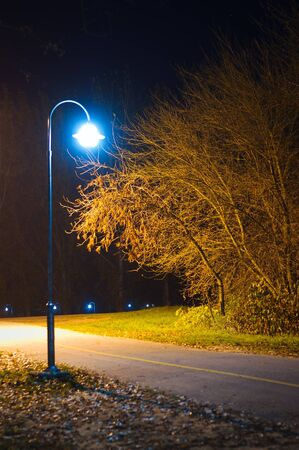 Lamp lighting up a path in empty park. Autumn night shot.  photo