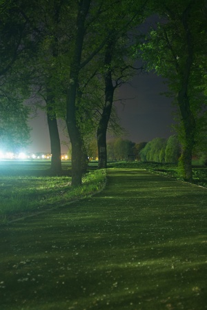 creepy: Path through park at night with city lights in background