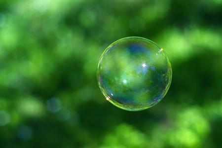 Single soap bubble over green grass photo
