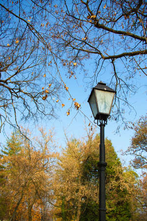 electric avenue: Anitque lamp in the park at autumn