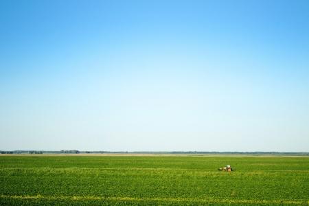 Tractor oogsten groene veld in de verte