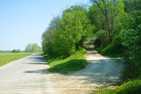 Alternatief pad door het bos langs de weg Stockfoto