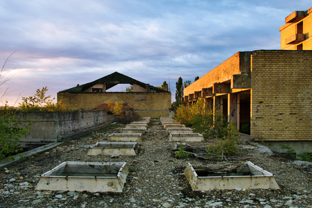 Abandoned destroyed overgrown building rooftop Stock Photo - 23116952