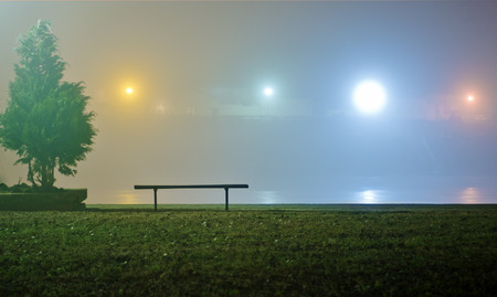 Single bench and tree by the river at foggy winter night photo