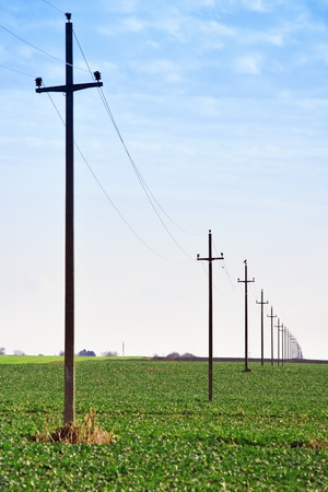 Old retro telephone poles in the field photo