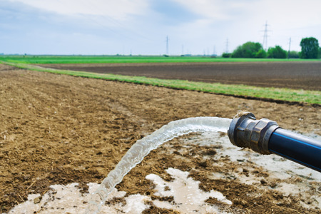 Flowing water from hose on agricultural field during irrigation