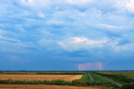 Distant lightning thunderbolt strikes over agricultural corn field at night photo