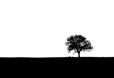 Lonely tree vector silhouette Vector
