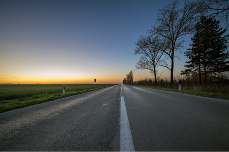 Bare trees by the long empty road at sunset photo