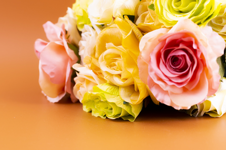 Colorful roses on brown background