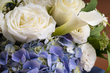 Fresh and colorful  flowers Stock Photo