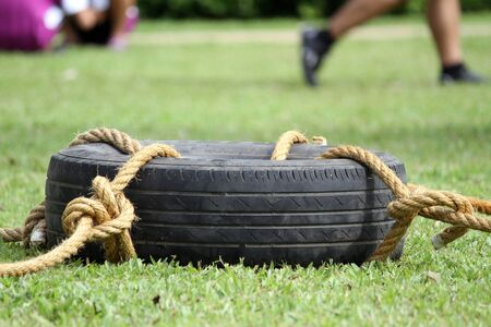 Tires were tied with a rope on the grass  photo