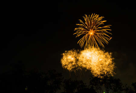 '5 december': firework in suanloung park thailand on 5 december 2013, father day