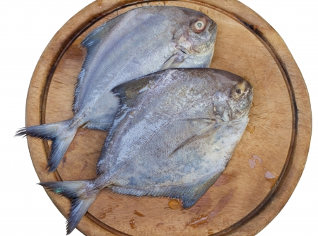 Two of black Pomfret on wood block photo