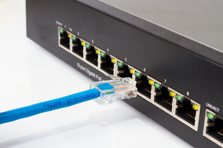 plugging: LAN network switch with internet cables plugging in on white