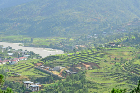 Stunning View of Rice Terraces in Punakha, Bhutan