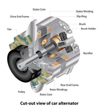 Vector illustration of vehicle alternator showing its construction