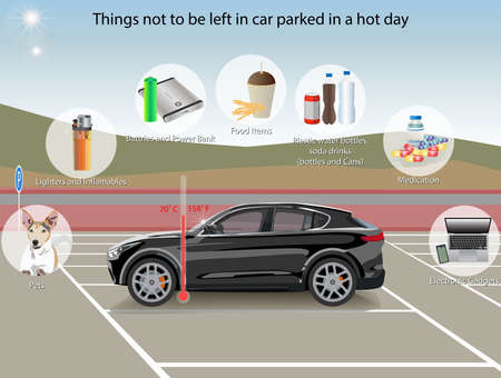 Vector Illustration of things that should not be left inside car parked in direct sunlight
